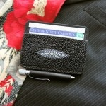 Stingray Wallet front